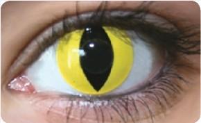 Funky Lens Cat Eye