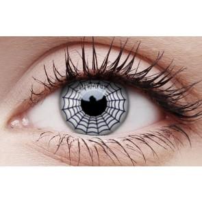 Funky Lens Spider